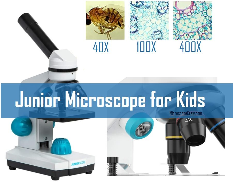 Junior Microscope for kids below 100 dollar