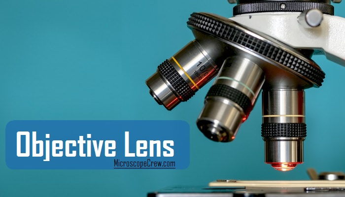 Objective Lens of a microscope