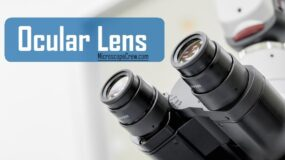 Ocular-Lens-in-Microscope