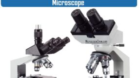 Difference between Binocular and Trinocular Microscope