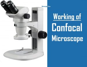 How Does a Confocal Microscope Work