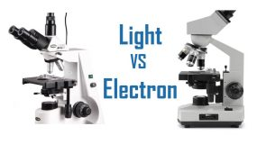 difference between light and electron microscope
